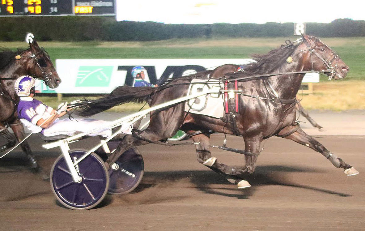Harness trainer sets sights on fifth Meadowlands Pace title