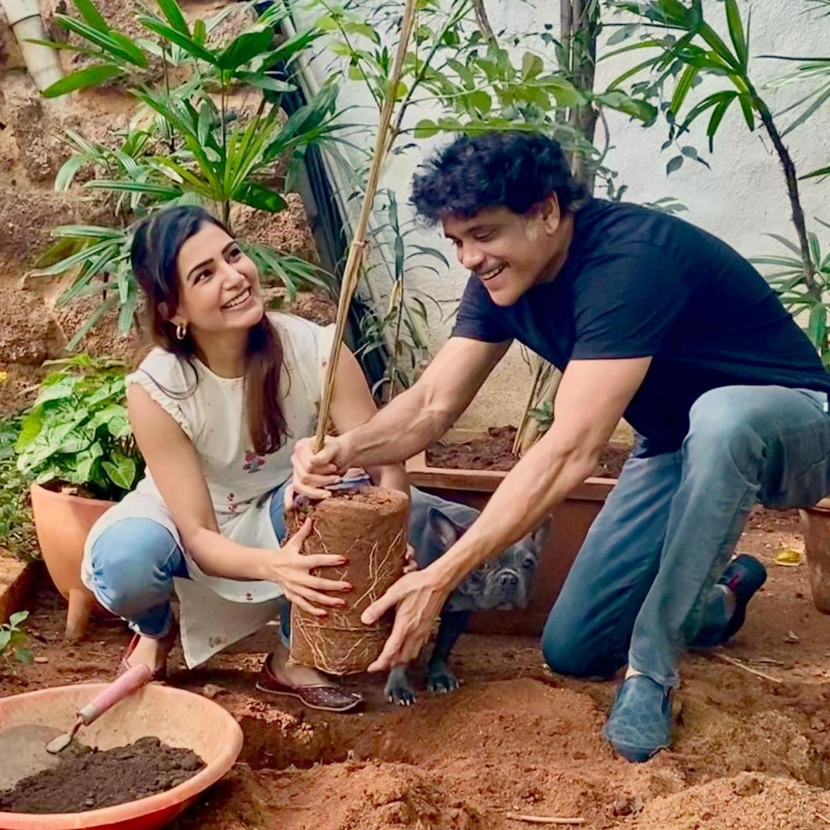 Samantha Akkineni performs the Green India Challenge with her father-in-law Akkineni Nagarjuna