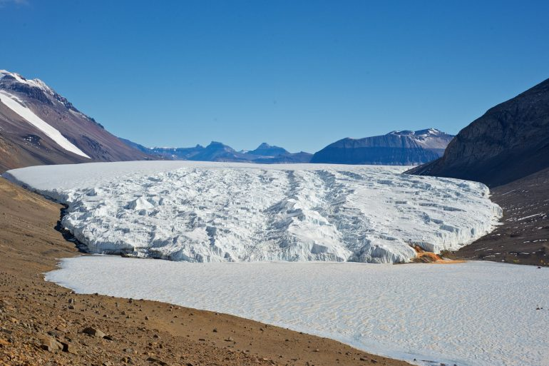Ancient gene family protects algae from salt and cold in an Antarctic lake