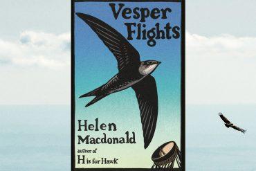 Helen Macdonald's Vesper Flights review: Another soaring memoir