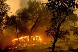 Here's where wildfires are in the US