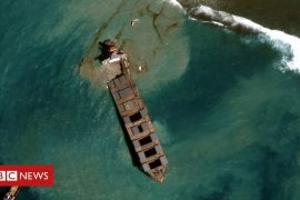 Mauritius oil spill: Satellite images show removal operation