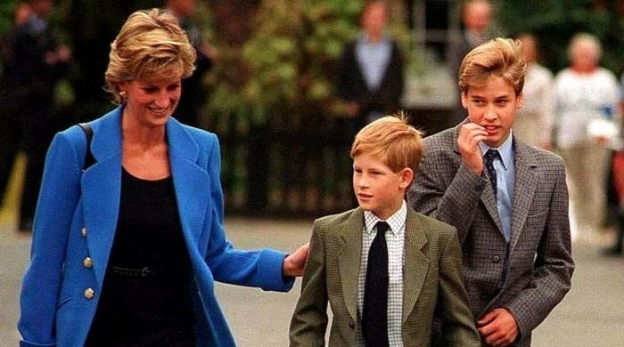Princess Diana connected way more with Prince Harry than Prince William