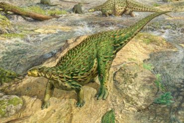 The only complete dinosaur skeleton ever discovered has finally been assembled – BGR