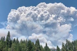 Creek fire: Campers warn to seek shelter as wildfires spread in northern California