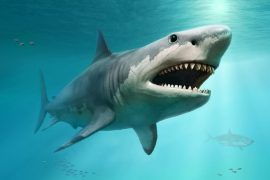 The 400-meter-old 'armored' fish may, as we know, change the history of sharks