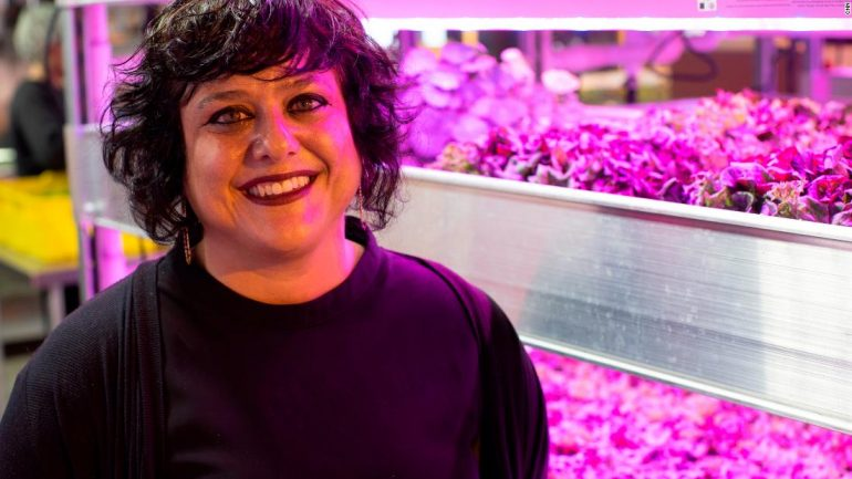 This innovative farm grows over new products