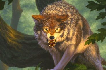 The Dungeons & Dragons extension will give new rules to animal sidekicks