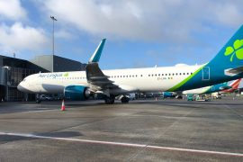 Er Lingus was criticized for his income support for workers