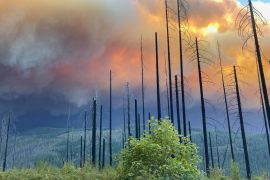 Oregon Wildfire Saturday: Details, maps, and evacuation information for the state's largest wildfire