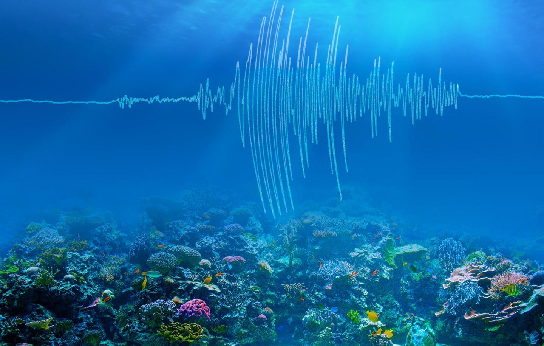 Undersea earthquakes shake meteorology - SwordsToday.ie