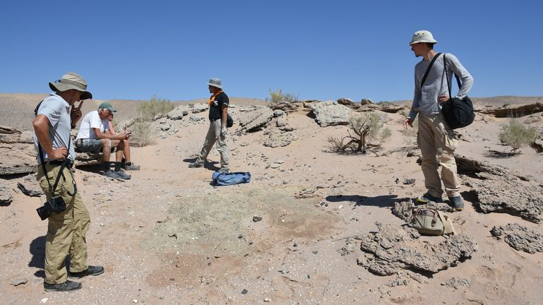 A hand-out photo of members of a team led by the University of Edinburgh in the Gobi Desert in Mongolia, where a multi-species skeleton of a toothless, two-fingered dinosaur, the Oksoko Aversan, was found. The feathers and omnivorous creatures grew up to two meters in length, each had only two functional numbers on its wrist, and had a large beak with no teeth similar to that found in parrots today.