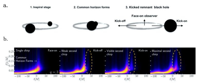 Black hole merger phases