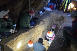 A New Window on Ancient Skull Human Migration and Denisovan Meetings