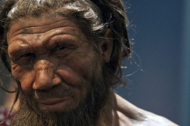 Climate change may have led to the extinction of early humans - study