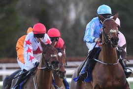 Darver Star (left) - heads to Champion Hurdle