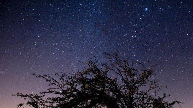 Draconid meteor shower: how it will look and when it will rise