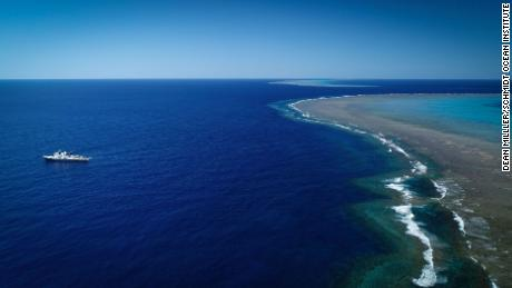 & # 39;  Huge & # 39;  Coral reefs taller than the Empire State Building found in Australia