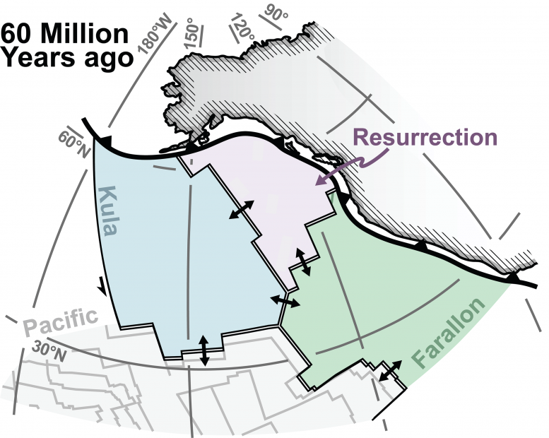 Plate tectonic reconstruction