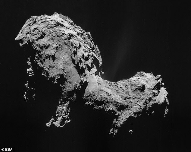 The discovery of glycine in comet 67P / Churyumov-Gerasimenko (pictured) and samples returned to Earth from the Stardust mission indicates that amino acids such as glycine formed long before stars or planets.