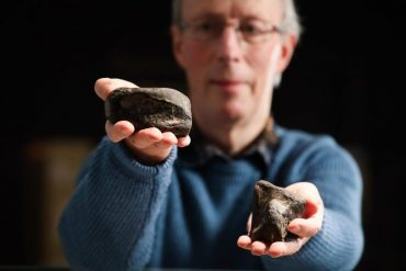 The only dinosaurs in Ireland found in Antrim - Heritage Daily