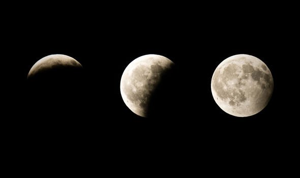 Eclipse Horoscope: How the Lunar Eclipse of 2020 Will Affect All Constellations