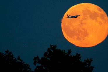 Full moon for Halloween 2020: Rare blue moon to illuminate the sky