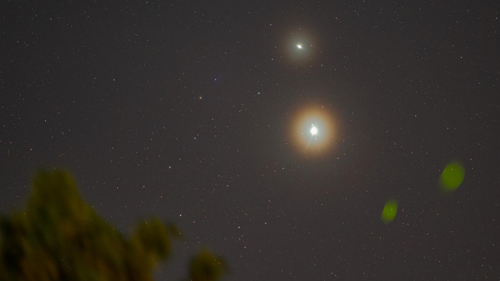 """Captured by Mexican photographer """"Christmas star"""" From Cancun"""