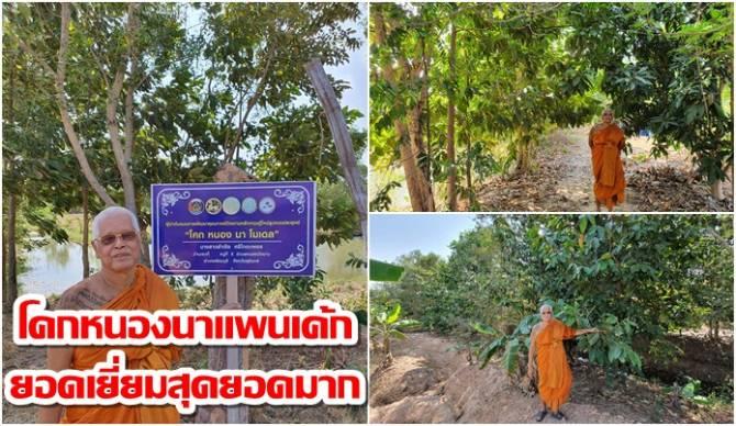 Ton - Dr.  Luang Por Deng was impressed.  A fascinating visit to Khok Nong Na Cake