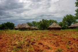 Help small farmers first to avoid famine