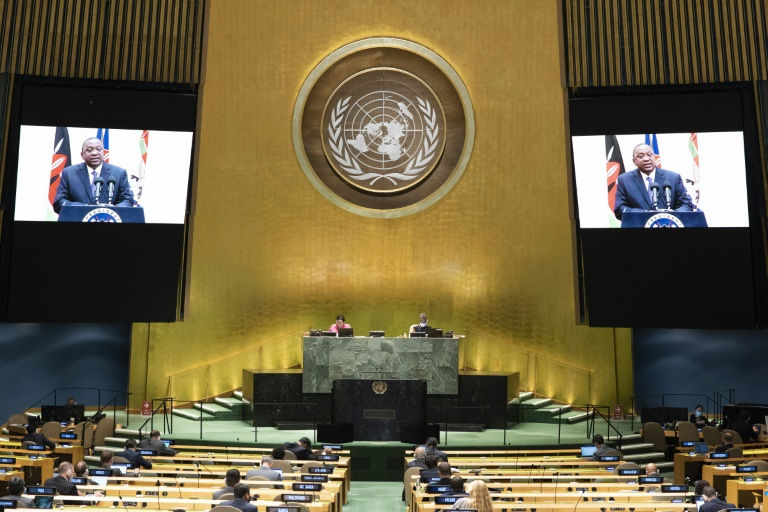 The Security Council includes India, Mexico, Norway, Ireland and Kenya