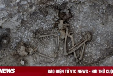 Nigo object in an ancient tomb for 4,000 years