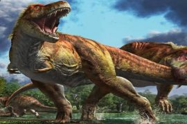 This is how the dinosaur species became extinct: that object that came from the sky - shocking information to scientists!  |  Dinosaur species may become extinct due to a chixulab impact: Scientists!