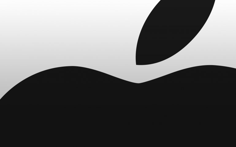 Apple and Ireland are seeking review by the European Union Commission
