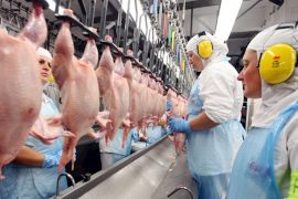 Azerbaijan suspends imports of poultry products from the Czech Republic, Germany, England and Bulgaria