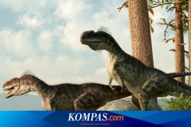 This is a new theory about the causes of the extinction of dinosaurs, not asteroids