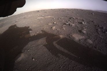 Watch exciting new videos from Rover