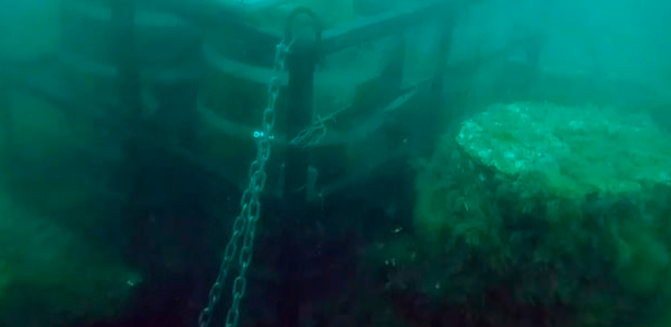 Beer barrel thieves steal to mature under the sea