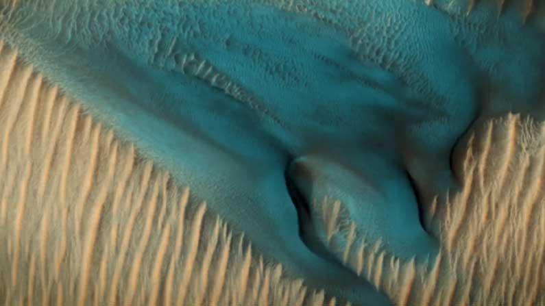 Blue Dunes on Tuesday 2nd