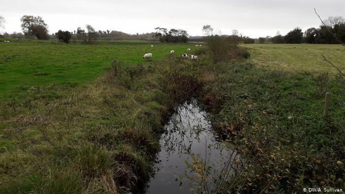 Irish pastures on the Northern Ireland border