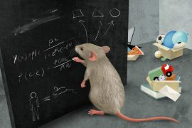 Master Summary of Rats and Complex Thinking Trends21