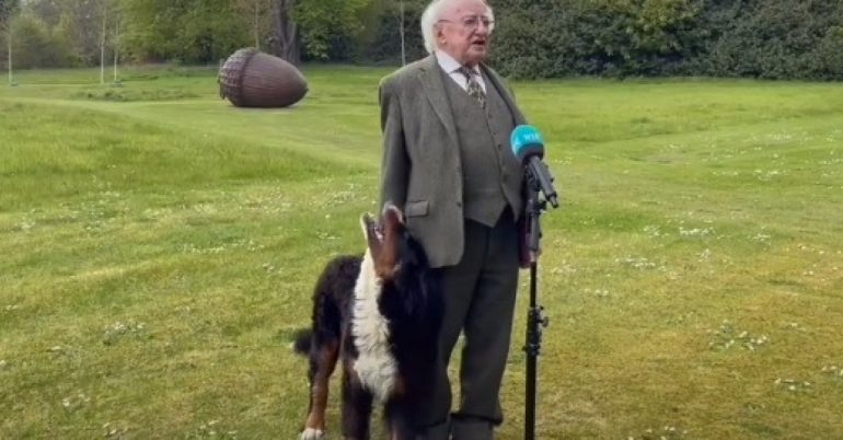 Irish president's dog's respect goes viral during an interview (video)