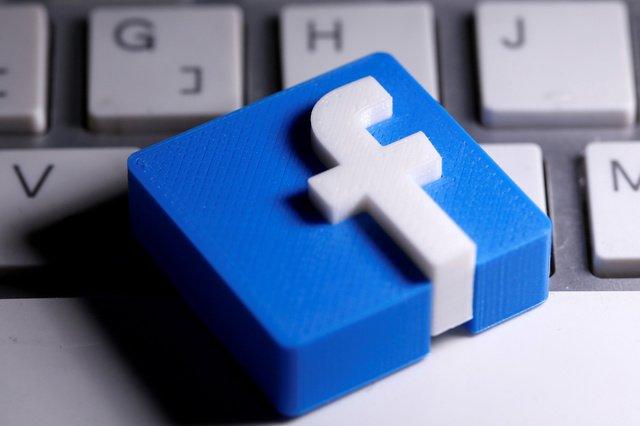 Facebook fails to block Irish regulator probe - Business