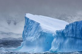 Giant iceberg separated from the western shelf of Antarctica    Europe