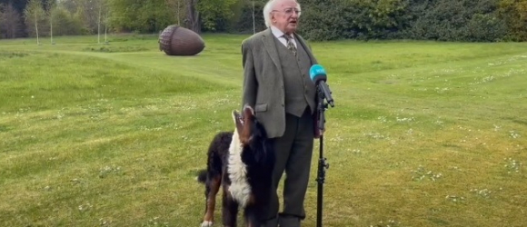 """Illustration: """"Irish president's dog's respect goes viral during an interview (video)"""""""