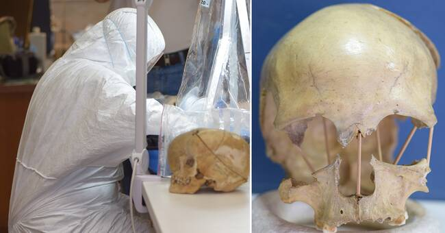 Lived 35,000 years ago - now Swedish researchers have mapped her genome