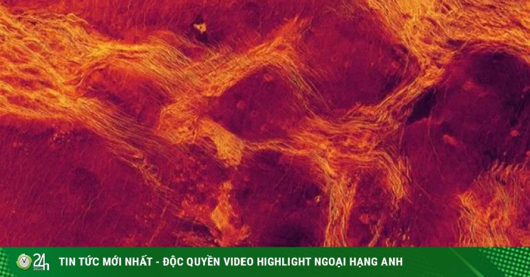 NASA seizes evidence that Venus lived 17 years ago?
