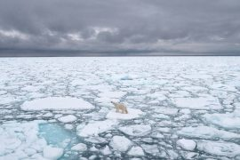 """Arctic exploration: """"The slope of irreversible global warming may already be over""""  Environment"""