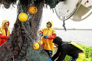 Fishing: Flexible Agreement with the United Kingdom - Economy