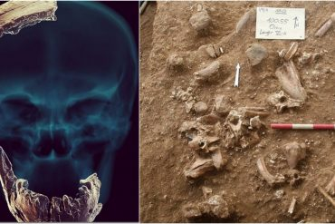 History is being rewritten.  Israeli scientists have discovered the findings in the skull that point to interesting facts